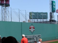 Green Monster Netting
